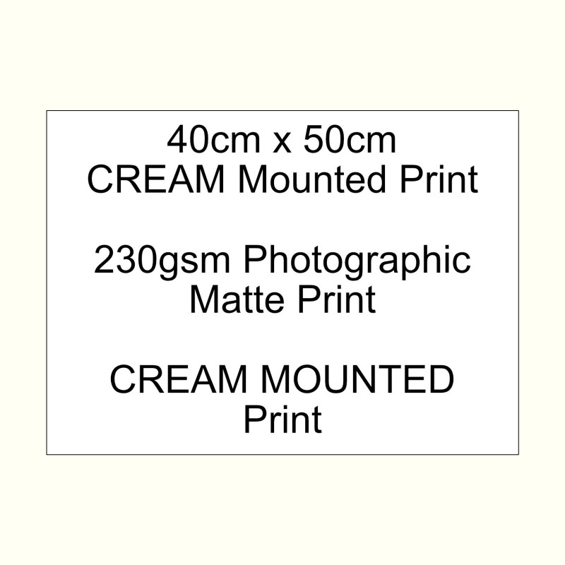 40cm x 50cm mounted CREAM 230gsm custom print