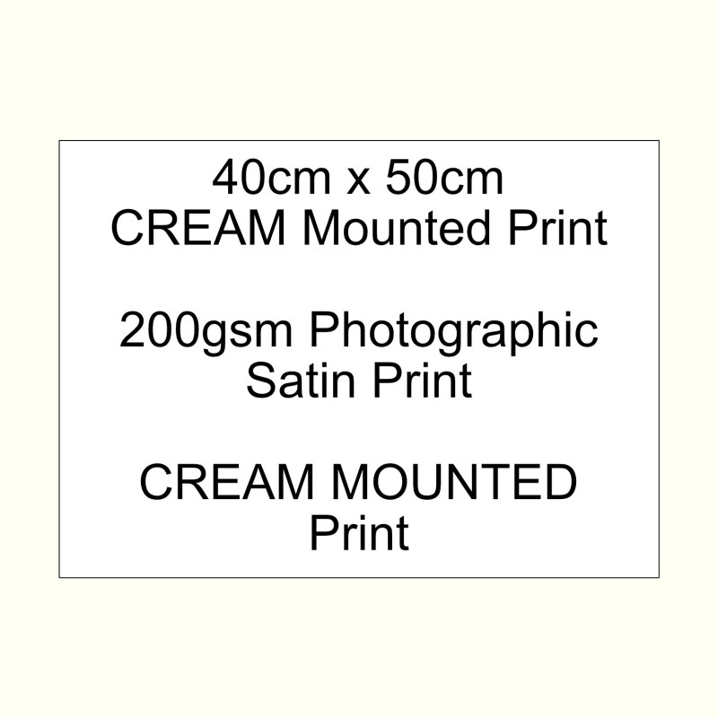40cm x 50cm mounted CREAM 200gsm Satin custom print